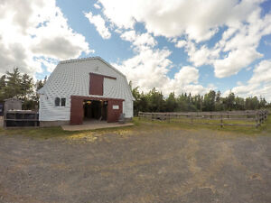 Horse Boarding Lucasville Available Now!