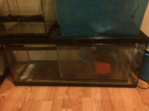 Selling reptile tank