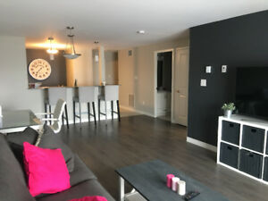 Lease takeover/Sublet Luxury One Bedroom Unit
