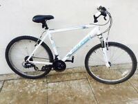 Raleigh mountain bike * White * good