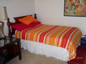 Double Bed and Boxspring London Ontario image 1