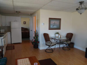 Large 1 Bedroom Apartment and (Furnished or Unfurnished)