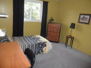 Kanata north room rental beside high tec park