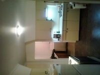Furnished house $600 FOR RENT Smooth rock falls