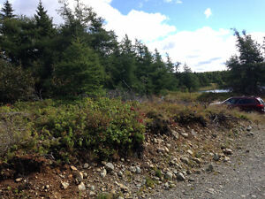 Commercial Land for Sale in Bay Roberts on Beaver Pond!!! St. John's Newfoundland image 4