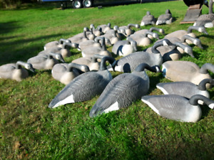 36 inches goose decoy shells SOLD PENDING PICKUP