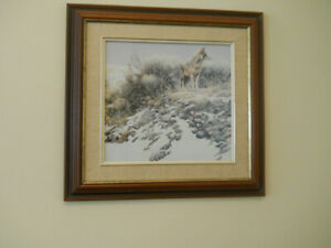 Pictures of wildlife in frames