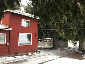 Enderby - Cabin suite with loft just minutes north of Enderby
