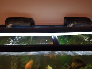 120-150 GALLON FISH TANK
