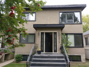 Furnished Apartment Available for 3 month Sublet!