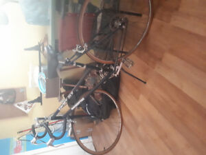 Womens 10 speed bicycle