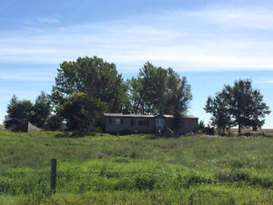 Acreage for Rent - 3 Bedroom Home on 3 acres near Strathmore