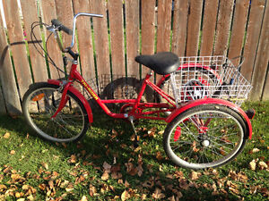 For sale adult 6 speed Tricicle
