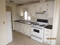 3 Bedroom Home Available July