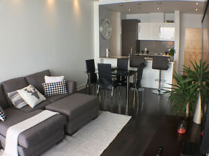 Beautiful and luxurious condo for rent
