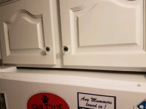 Looking for someone to cut cabinet above Fridge.  See pic