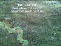 Good Deal!!Grazing Lease for sale by Peers Alberta