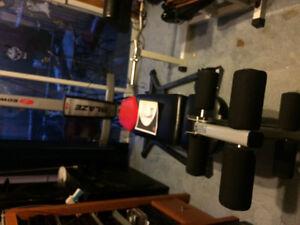 Bowflex and Nordictrack equipment