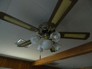 42 and 52 Inch Ceiling Fans with Lights