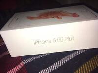 IPHONE 6S Plus - 16GB - Rose Gold - Unlocked