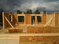 EXPERIENCED CARPENTER  FOR RENOVATIONS