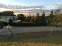 Charming Acreage 40 Miles From Weyburn and Estevan - Oungre, SK!