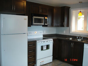 Beautiful 2 bedroom apartment for rent St. John's Newfoundland image 3