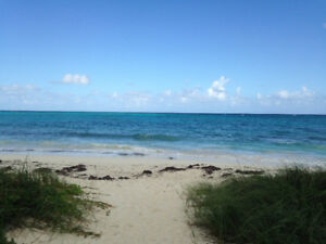 Bahamas Luxury Beachfront Condo for rent.