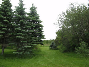 3.6 Acres with Deeded Access to St Lawrence River, Bainsville West Island Greater Montréal image 8