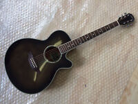 Brand New Aria FET-Elite Electro Acoustic Guitar With Built In Tuner See Thru Black Finish