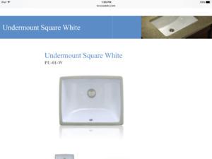 Sink. Bathroom. Undermount.