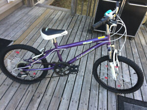 Girls 20in Purple Bike     (Sold)