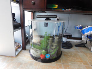 20 Gallon Fish Tank with everything included & Stand 150 OBO