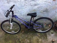 Girls mountain bike. Good condition