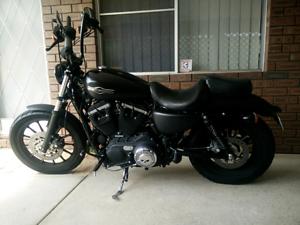 2012 Harley Davidson Sportster Custom Dianella Stirling Area Preview