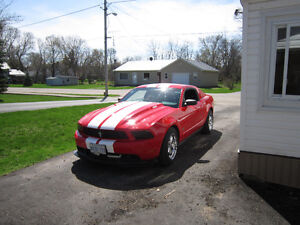 2012 Ford Mustang coupe Coupe (2 door)