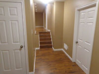 Basement Renovations and Remodeling  - Quality Service on Time