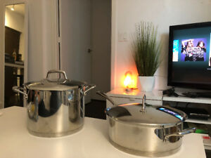 2 Kirkland Signature Stainless Steel TriPly Clad Cooking Pots