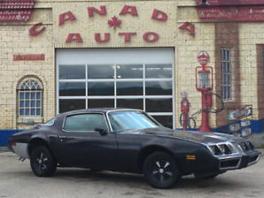 1980 Pontiac Firebird Esprit - New Safety - Private Sale