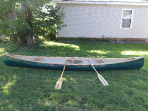16 ft canoe and paddles
