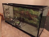 80 gallon tank with accessories