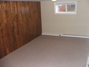 2 BEDROOM APARTMENT in Mount Pearl - recently renovated