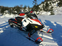 Ski-Doo Renegade Backcountry X 800 R-Etec
