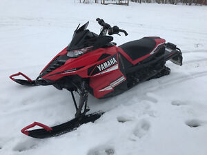 Mint viper trade for xf 800 or f800 or zr sno pro
