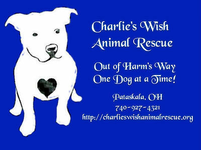 Charlie's Wish Animal Rescue