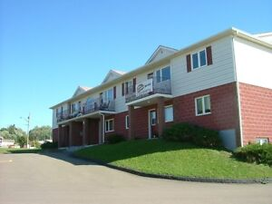 1 Bedroom off Shediac Rd
