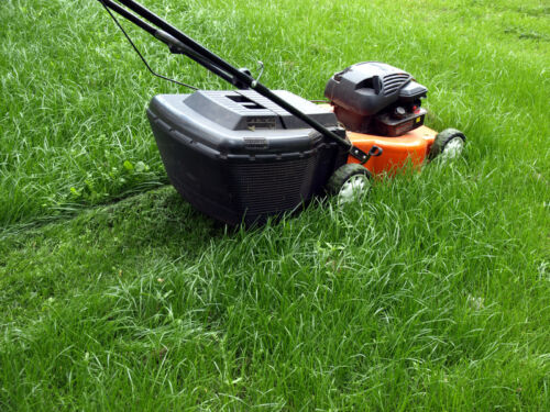 The Complete Guide to Buying Lawn Mower Parts and Accessories on eBay