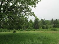 $$REDUCED$$ -15.57 Acre Lot ,With Well.10 Minutes From Hampton