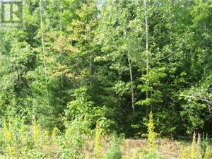 0 JODOUIN ROAD, Papineau-Cameron Twp, Ontario, P0H 1V0