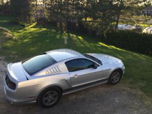2013 ford mustang  v6 with extras.